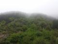Планина 1